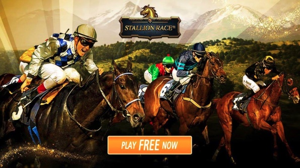 stallion race review
